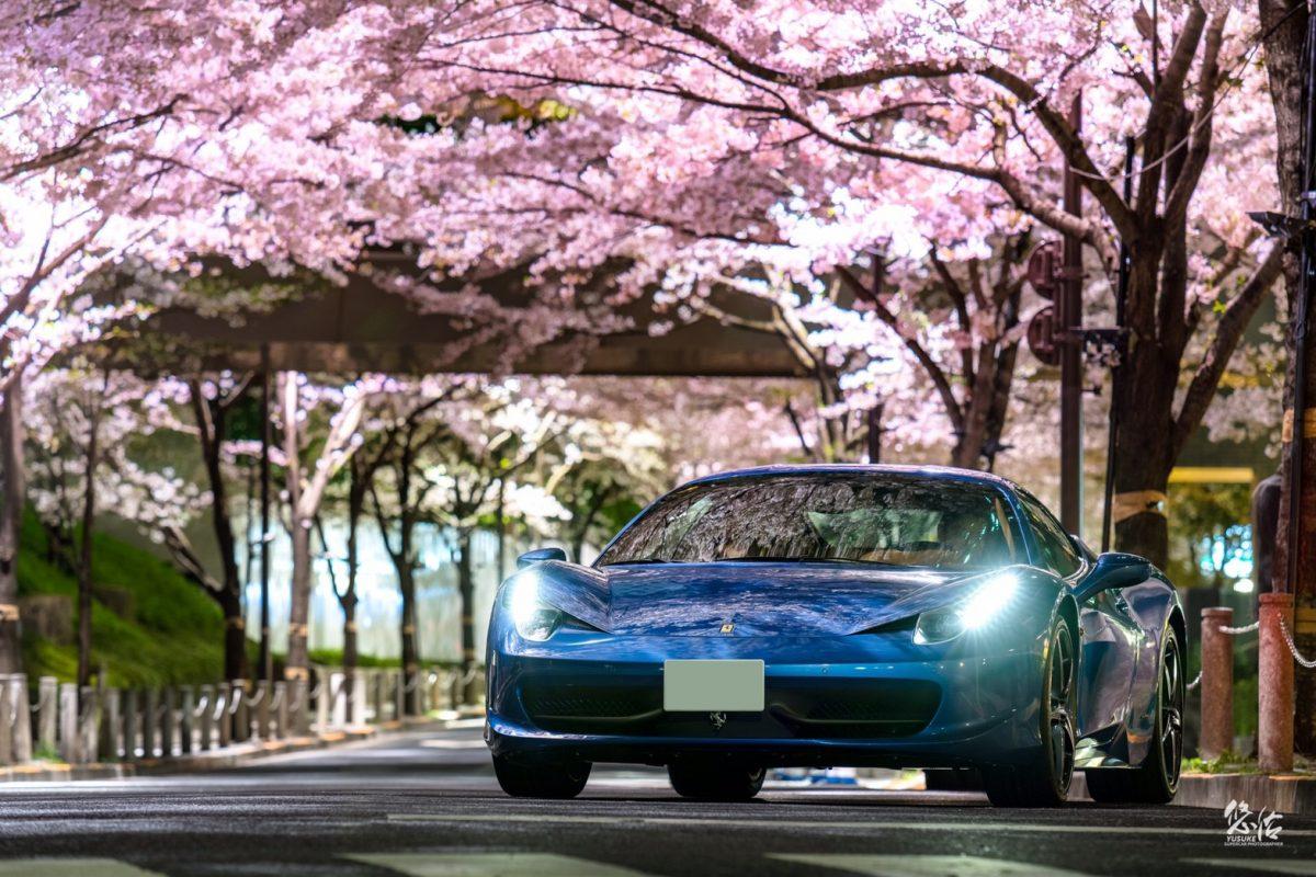 FERRARI 458 Itaria 桜×車真